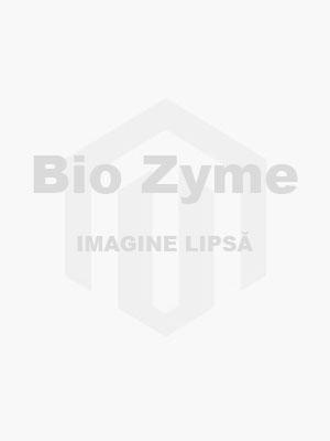 25-Place Polycarbonate Storage Box,  Yellow,  5 pcs/pk